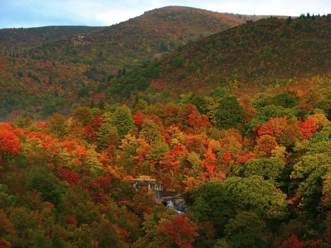 North Carolina Top 5 Asheville Ecotourism Attractions