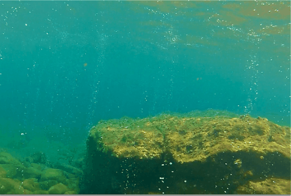 Snorkeling Champagne Reef, Dominica