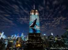 Racing Extinction Image Projected on Empire State Building