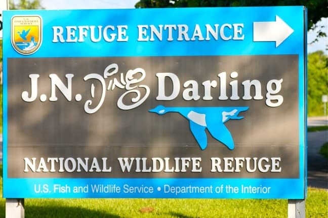 Photos of J.N. Ding Darling National Wildlife Refuge in Sanibel Island, Florida