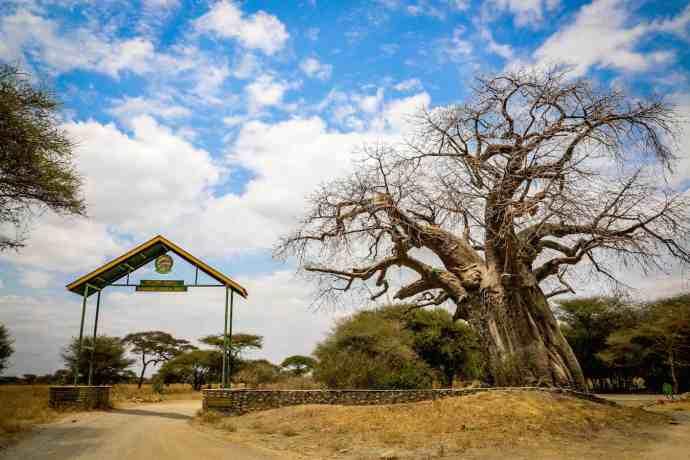 Tarangire National Park Entrance. Tanzania