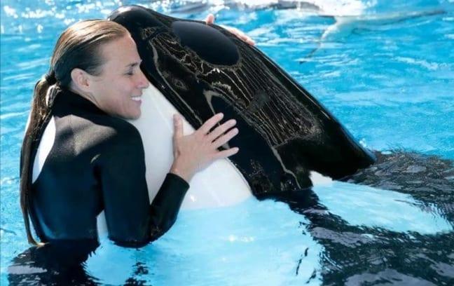 Whale Trainer Dawn Brancheau at Sea World