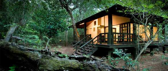 phinda forest eco lodge, South Africa