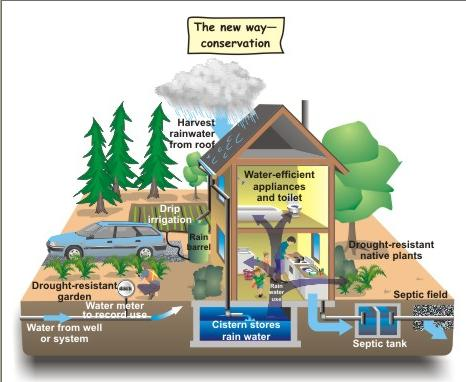 rainwater harvesting essay