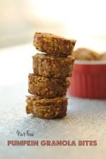 Nut Free Pumpkin Granola Bites