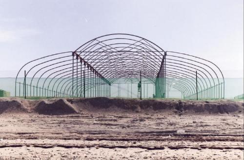 seawater greenhouse image