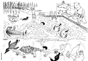 Swimming with animals
