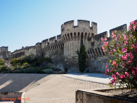 The City Wall of Avignon