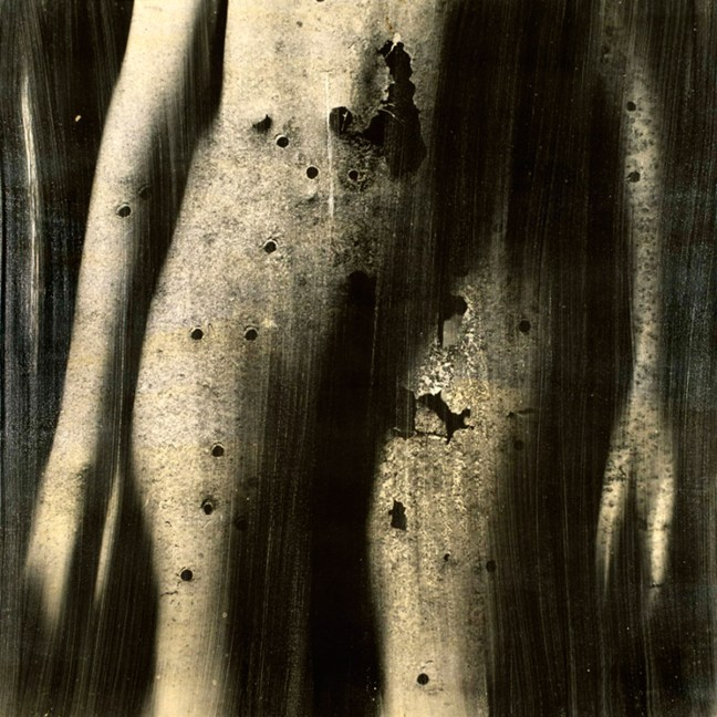 Greg Mettler, alternative process, photo emulsion