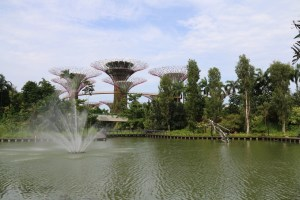Part of the garden by the bay