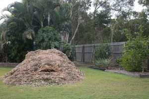 Only one of the twin mountains of mulch