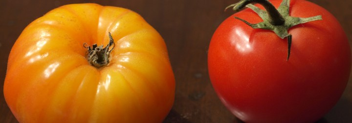 Caprese Grilled Cheese: Heirloom & Cluter Tomatoes