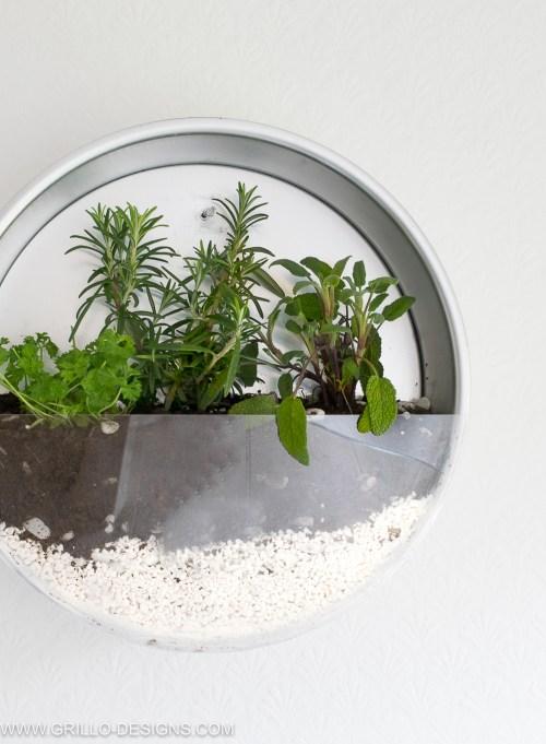 Medium Of Diy Herb Gardens