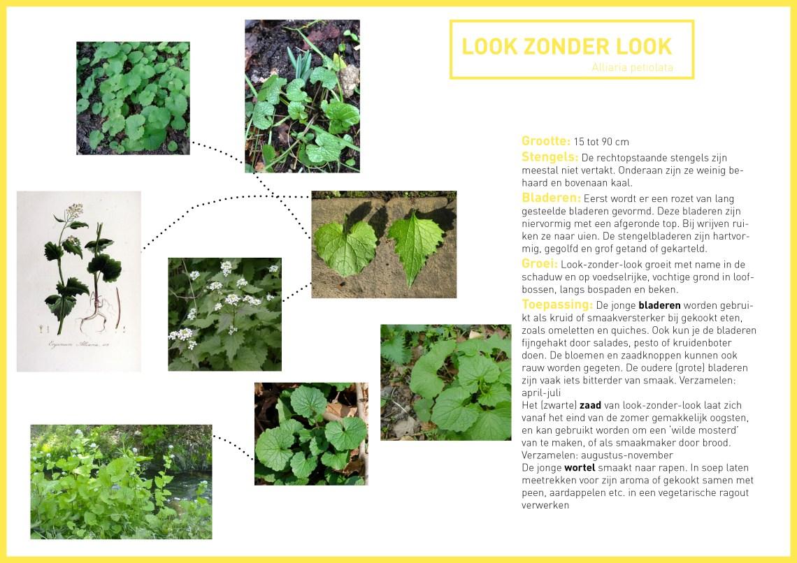 Look zonder Look - informatie - groene avonturen