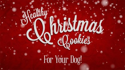 christmas_cookies_smaller