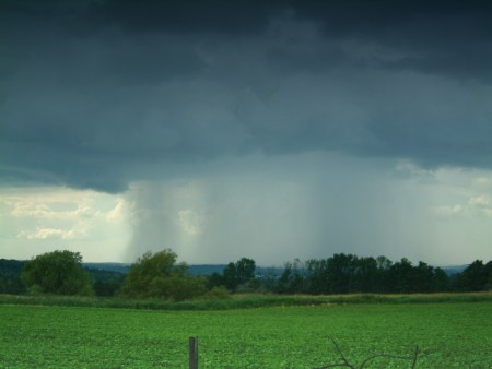 rain groovyman