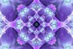 Violet aand Frost Blue
