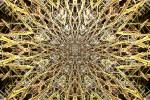 Golden Web2