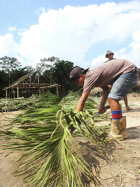 photographie-amazonie-indiens-indigenes-ayahusca-5
