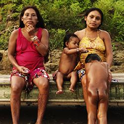 Photographie Amazonie 2016