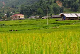 tavan-village-fields