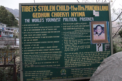 missing dalai lama, 11th dalai lama missing ad, tibet's stolen child, tibets youngest political prisoner