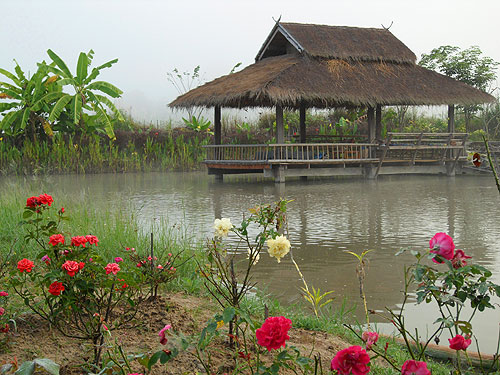 fish farm in morning