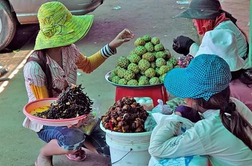 weird Cambodian food tarantula