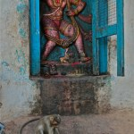 Love Letter #10: Beware of monkeys in Hampi
