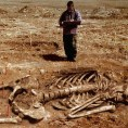 Giant Human Skeletons Discovered in Wisconsin?