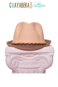 DR Fedora Tan & Brown Wood Band Front