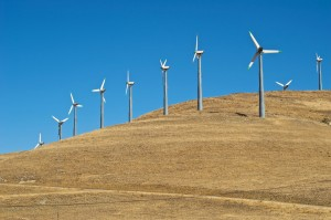 wind-stock