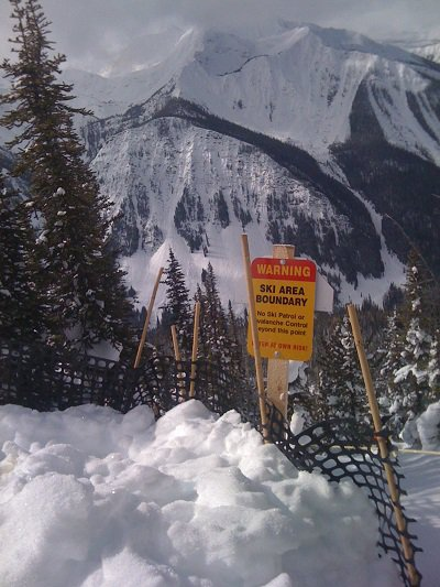 Ski Boundary Kicking Horse