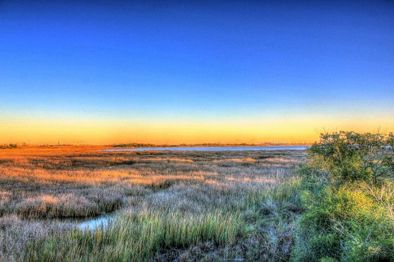 san jacinto monument marsh at sunset