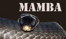 Black Mamba E-Liquid Review
