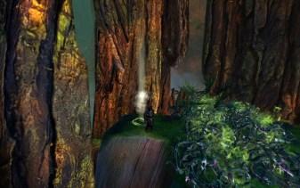 Ancient Tree HP