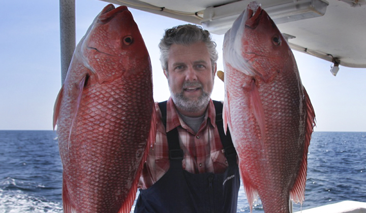 GSI Leads Support Preserving Access to Gulf Red Snapper for All Americans