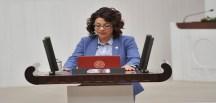 TORUL'DAKİ 10 KÖYÜN REFERANDUM KONUSUNA CHP MİLLETVEKİLİ'NDEN TBMM'DE SORU ÖNERGESİ