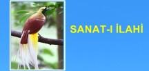SANAT-I İLAHİ