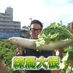 青空レストラン「練馬大根」東京都の名産!通販お取り寄せ情報も!