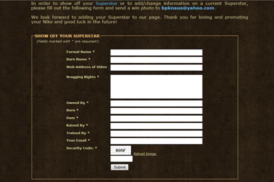show horses website