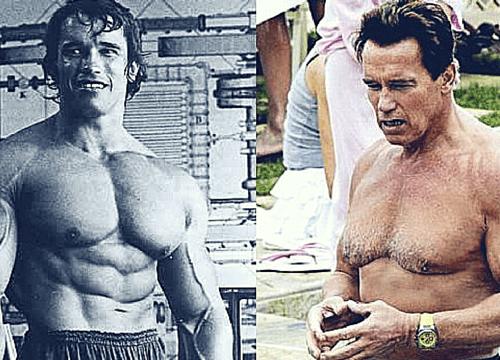 envelhecimento muscular
