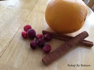 orange cranberry cinnamon