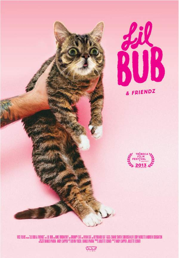 gwendalperrin.net lil bub friendz movie poster