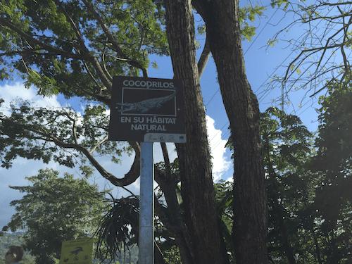 Beware of crocodiles sign in Spanish