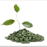 スピルリナのサプリメントの効果は?独特の匂いだが美容と健康に良い?