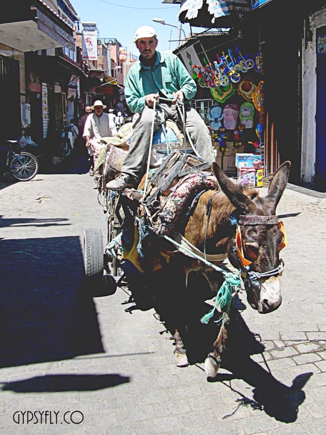 Donkey Cart, Inroads Marrakech, Morocco