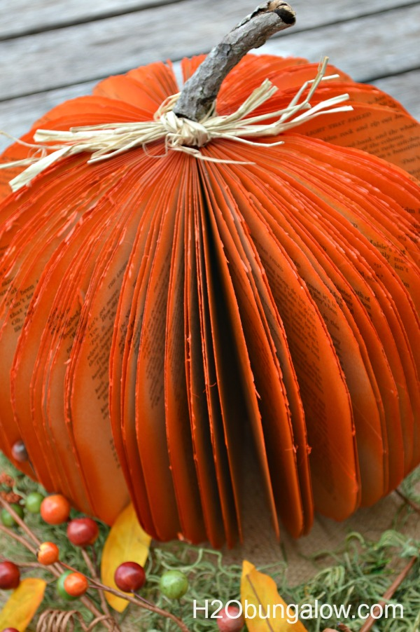 Twig-Stem-For-Book-Pumpkin-H2OBungalow