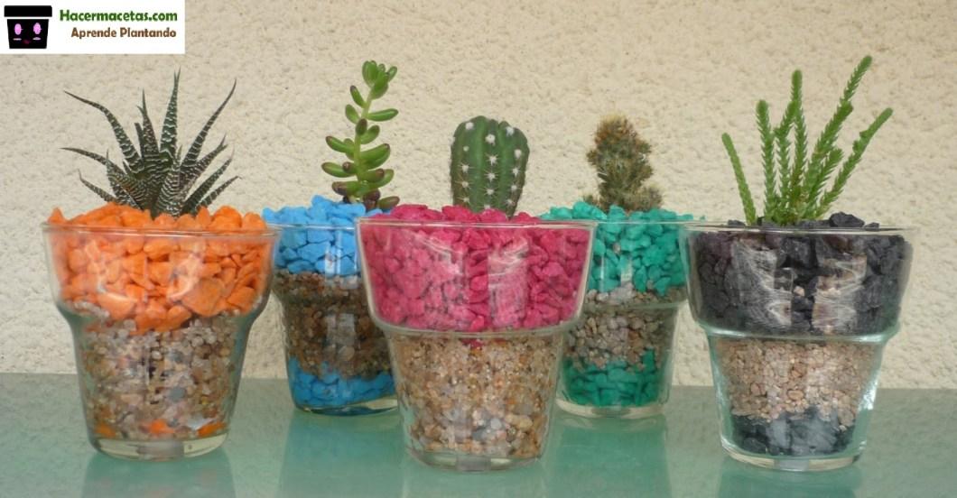 Plantas de interior y las macetas mas ideal y lindas para for Macetas pequenas