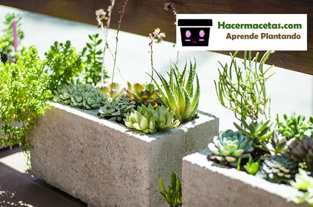 Como hacer macetas de cemento hacer macetas for Caminerias de jardin